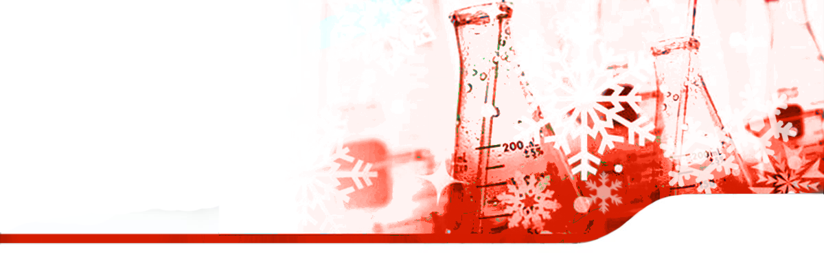 xmas banner red2
